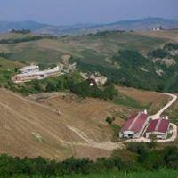 Az.agricola Aia Vecchia Spaccio Aziendale