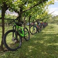 Bike&Wine Bar