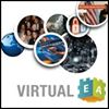 Virtual Enterprise Architects