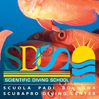 SDS - Scientific Diving School