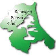Romagna Bonsai Club