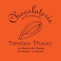 Damien Pineau, La Route du Cacao