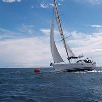 Simbad Cruceros