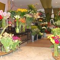 Flore Concept - Fleuriste décorateur