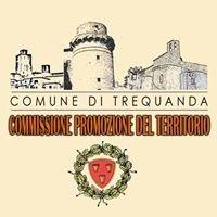 VIVA Trequanda - Commissione Promozione del Territorio