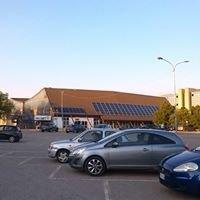 Ferrara Palasport