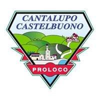 Pro Loco Cantalupo - Castelbuono