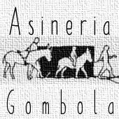 Asineria di Gombola