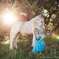 Sunset Hooves Photography