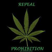 Josh cannabis sativa productions