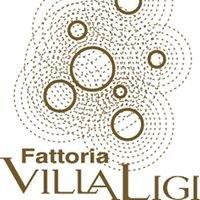 Fattoria Villa Ligi