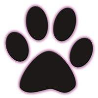 Noah's Ark Dog & Cat Grooming