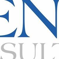 Fenix Consulting Oy