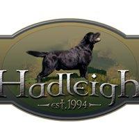 Hadleigh Labradors