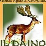 Azienda Naturalistica Il Daino