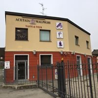 Acetaia Malpighi Modena
