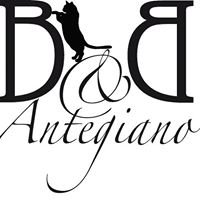 B&B Antegiano