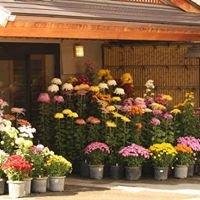 バリアフリーの温泉宿 旅館はくら (Yudanaka Ryokan Hakura)