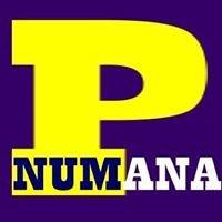 Porto Numana