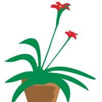 Multiplantes