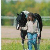 Harris Paint Horses