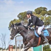 GrandView Sport Horses