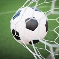 O mundo do futebol