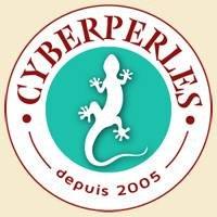 Cyberperles