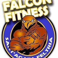Falcon Fitness - Sant'Agata Feltria