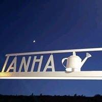 Tanha Lake Bar
