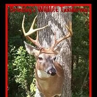 Brinkley's Whitetail Taxidermy