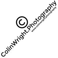 FightNight.Photography