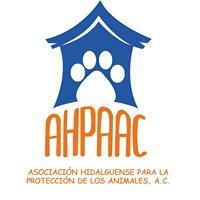 Asociación Hidalguense para la Protección de los Animales, A.C.