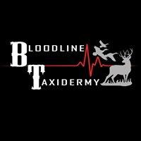 Bloodline Taxidermy