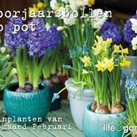 Life & Garden