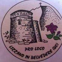 Proloco Lizzano in Belvedere