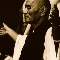 Dojo Zen Caballito