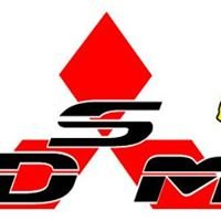 DSMpartout
