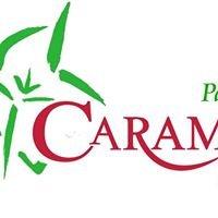 Caramelo -cafeterías & catering-
