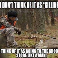 Wild Idea Archery