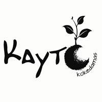 Kayto Kokedamas