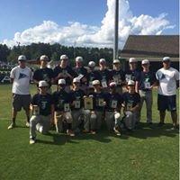 Team 360 Hawks Baseball