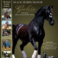 Black Horse Manor
