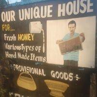Unique Eco House