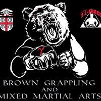 Brown Grappling and Mixed Martial Arts