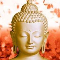 Buddha Gallery and Spa Sayulita