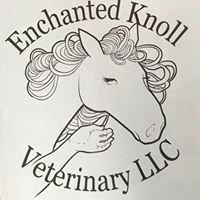 Virginia Equine Services,p.c.