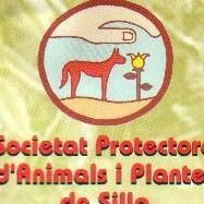 Spaps Ayuda a los animales abandonados en Silla -Valencia.