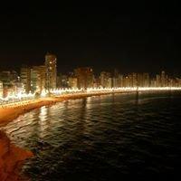 FINCAS ARENA (Alquiler de apartamentos en Benidorm) / (Apartment rental)