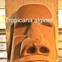Tropicana Alginet